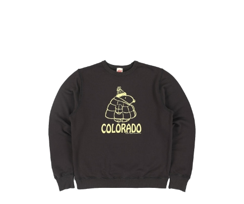 Snoopy Co. Sweatshirt